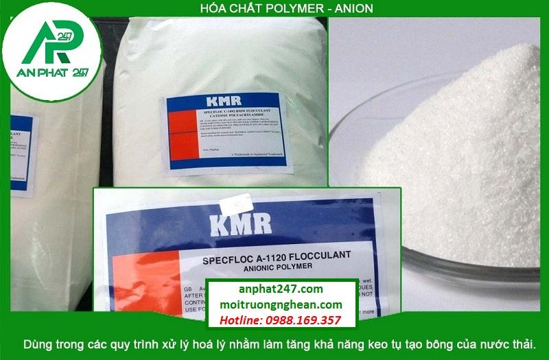 Hóa chất Polymer - Anion